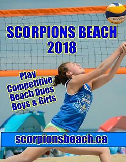 scorpions volleyball