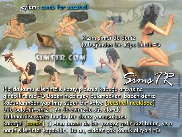 The Sims 2 Bon Voyage Comb for Seashell Deniz Kabukları Necklace Conch