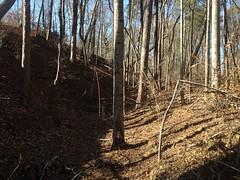 Upper Sugar Hill Creek Dam Borrow Cut 2