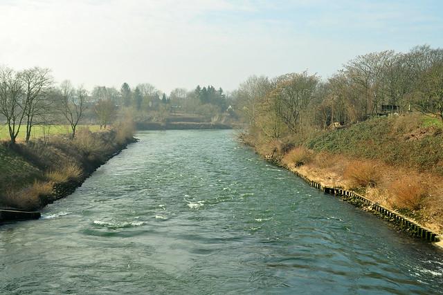 Die Mannheimer Maulbeerinsel im März 2018 --- Neckar, Neckarkanal, Naturschutzgebiet ... Foto: Brigitte Stolle