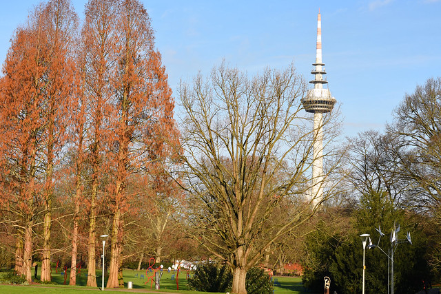 Luisenpark Mannheim Ende Januar 2018 ... Foto: Brigitte Stolle ... Fernmeldeturm