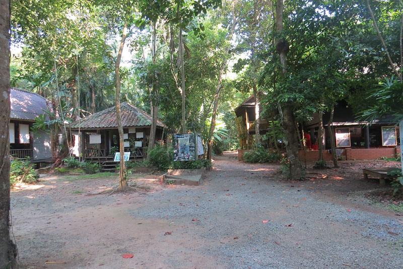 除了提供食物、樹苗和磚塊,森林也提供學習和住宿的服務。