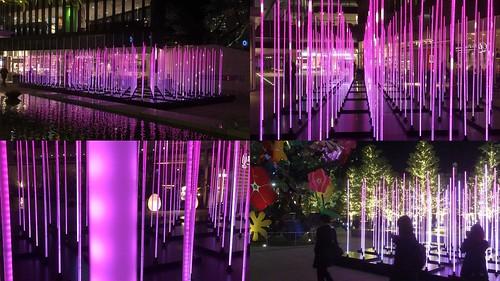 ピンクの光る棒が並んでるイルミネーション