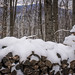 Snowy Woodpile and Blue Mountain View