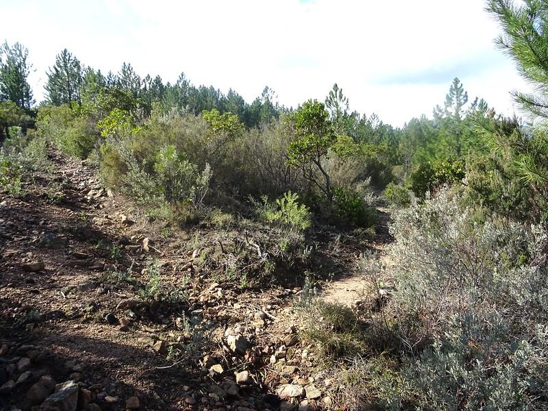 Bocca di Cinaghja : le départ du sentier de descente de Cinaghja vers la source