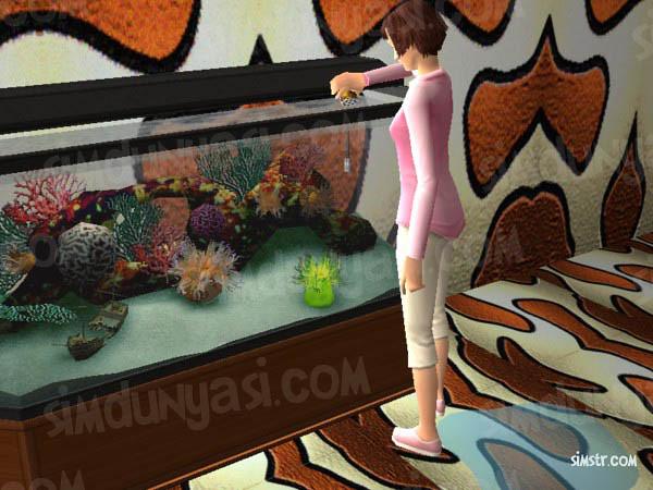 The Sims 2 Pets Aquarium Feed Fish