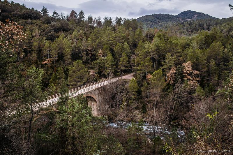 Puente de la Via Verde del Llobregat
