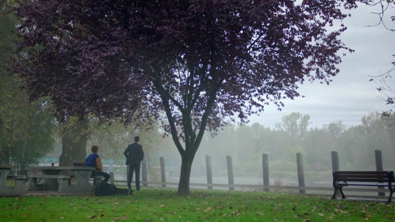 Archie scene setting in the park