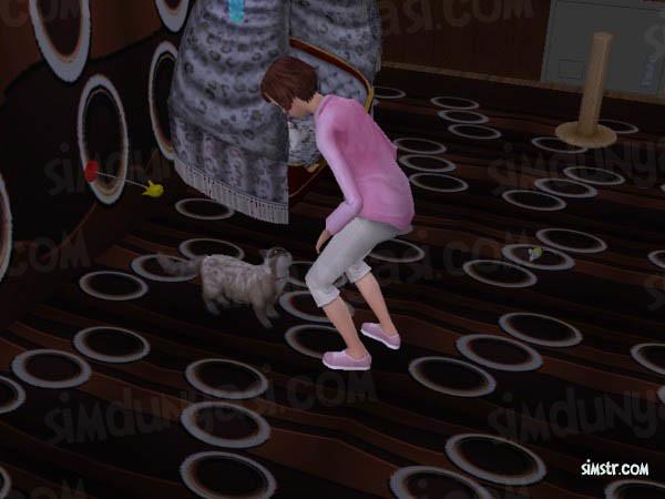 The Sims 2 Pets Teach Command Speak