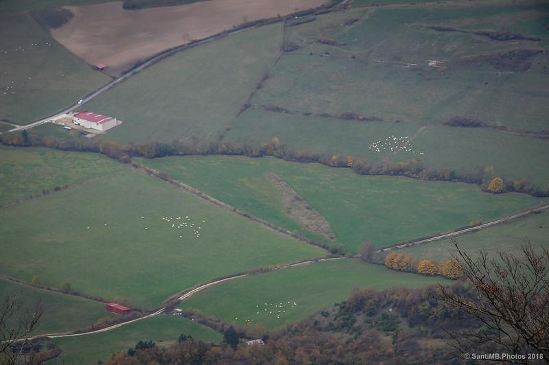 Campos del Valle de Ergoiena