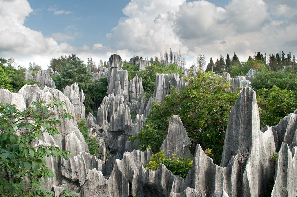 Who knew that stones and trees were a good combination? Stone forest, China