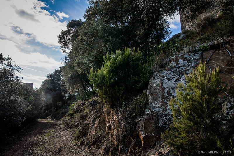 El Castell de Montsoriu al fondo y la Torre de les Bruixes a la derecha