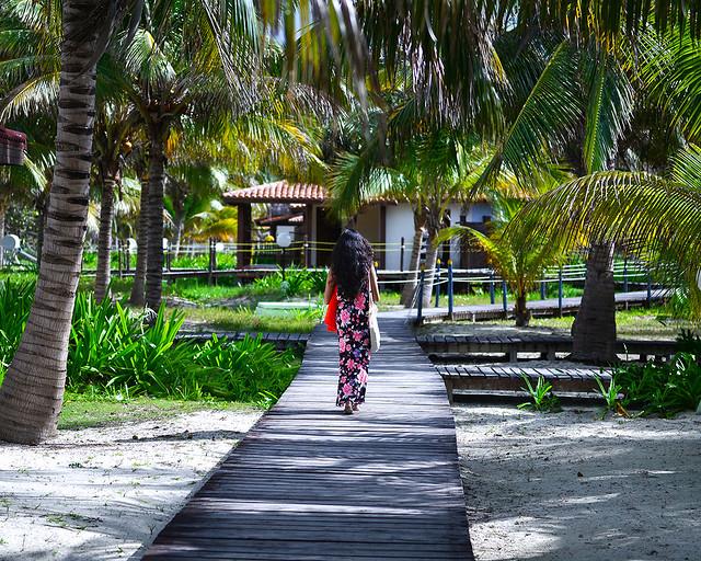 Caminando por los caminos de Cayo Levisa