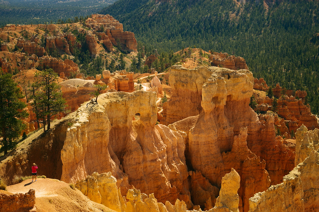 """Photo Favorite: Sunrise Point area, Bryce Canyon National Park, Utah, October 8, 2015 from 37°37'41""""N 112°09'47""""W (Pentax K3 II)"""