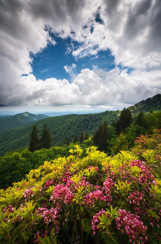 North carolina appalachian mountains spring flowers scenic flickr north carolina appalachian mountains spring flowers scenic landscape by dave allen photography mightylinksfo