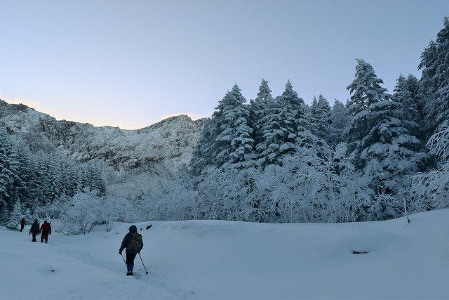 冬の八ヶ岳 樹氷の登山道