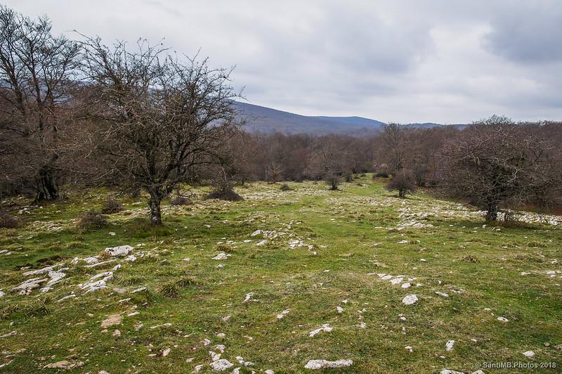 De camino a San Adrián de Lizarraga