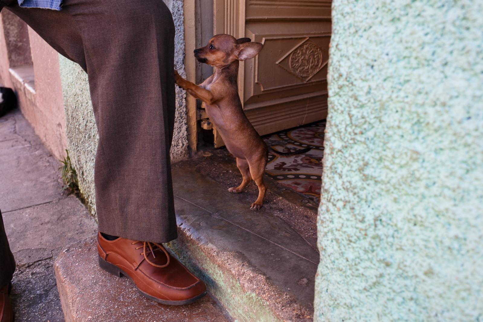 Matanzas, Cuba | by jaumescar