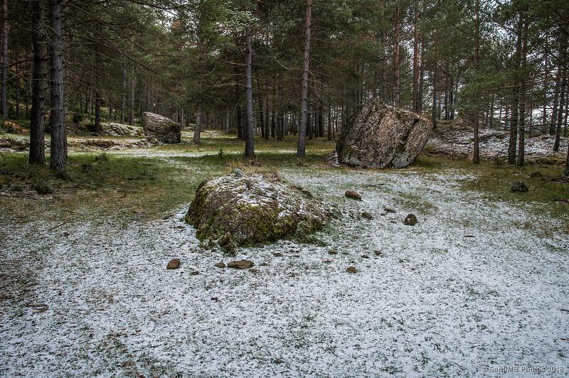 Rocas en el bosque cerca de Vila-rasa