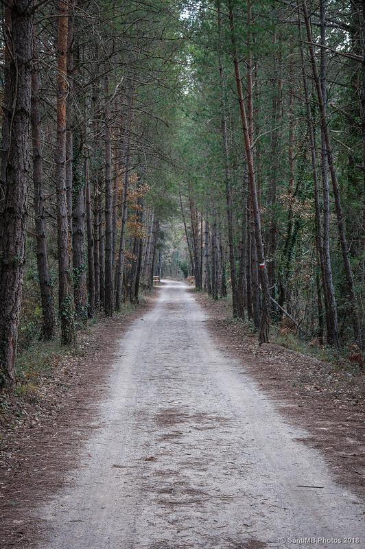 Vía Verde del Carrilet del Llobregat