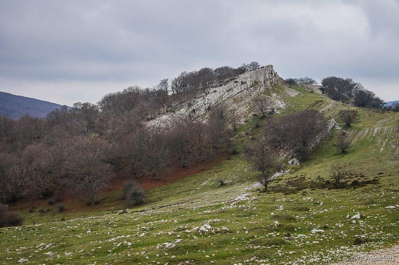 Zona limítrofe entre las sierras de Andía y de Urbasa