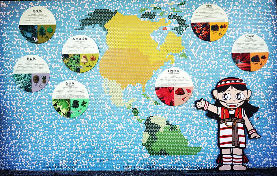 美麗壁貼 - 世界各地楓之介紹