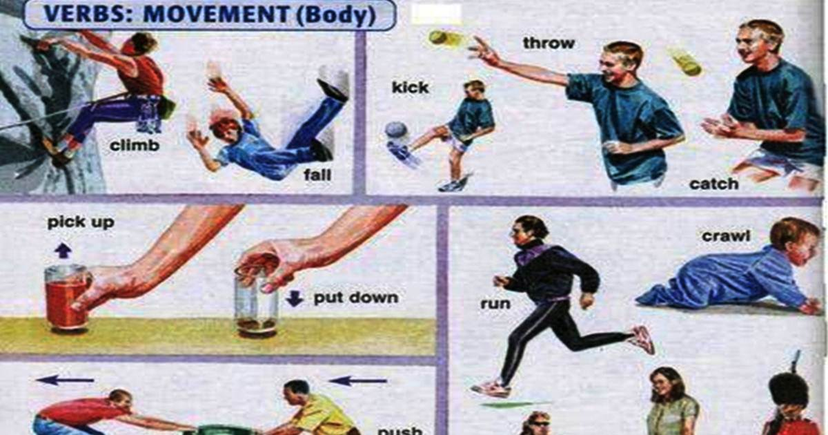 English Verbs of Body Movement 5