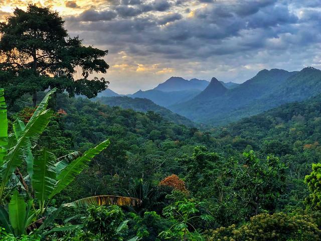 Parque Natural Obo en Santo Tomé (Santo Tomé y Príncipe)