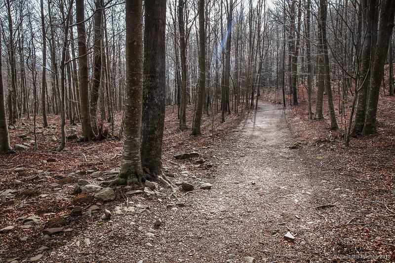 Camino de la Font de Passavets a Can Casades