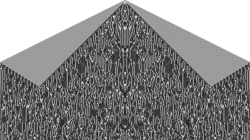 Two Steps Back Extended Cellular Automaton