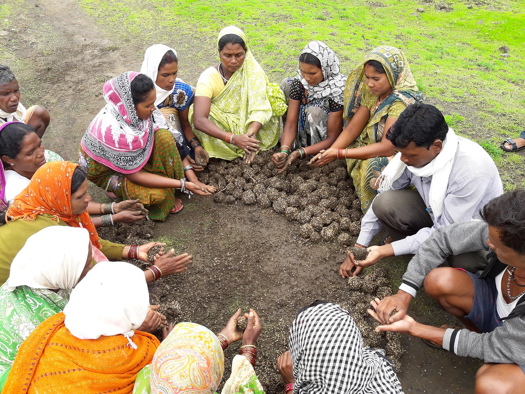 Villagers preparing seed balls to reclaim the land cleared of Lantana.