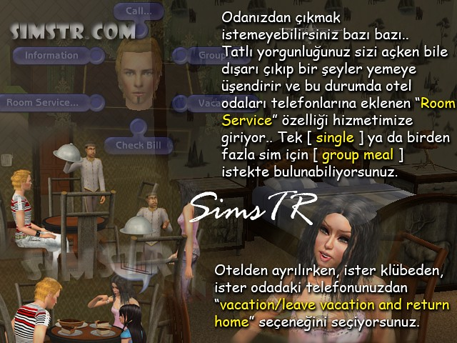 The Sims 2 Bon Voyage Room Services