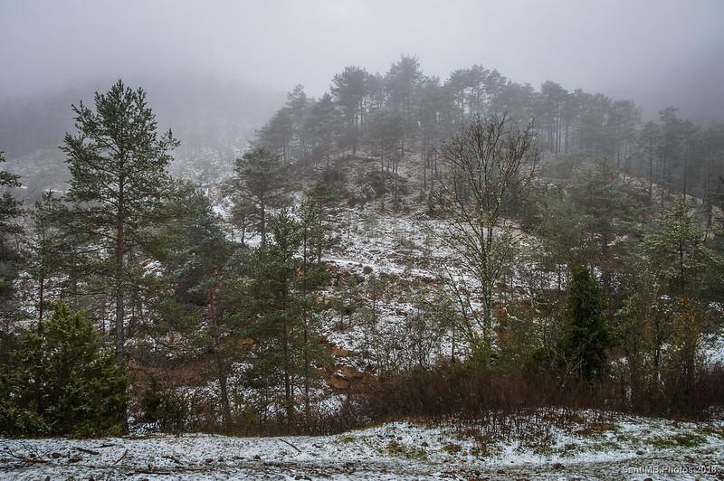 Cerca de Canemars en Sant Jaume de Frontanyà
