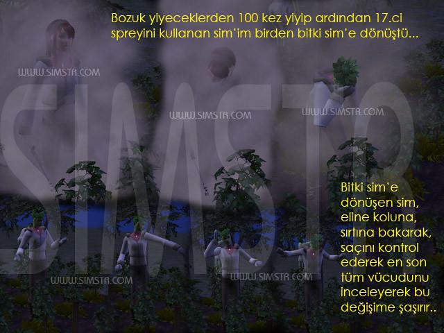 The Sims 2 Seasons PlantSim Bitki Sim