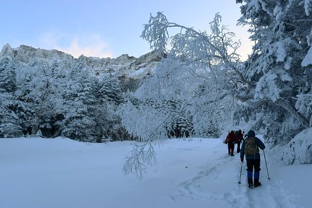 冬の八ヶ岳 霧氷の登山道