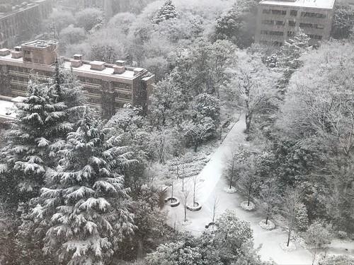 雪 東京ガーデンテラス紀尾井町 2018.1.22
