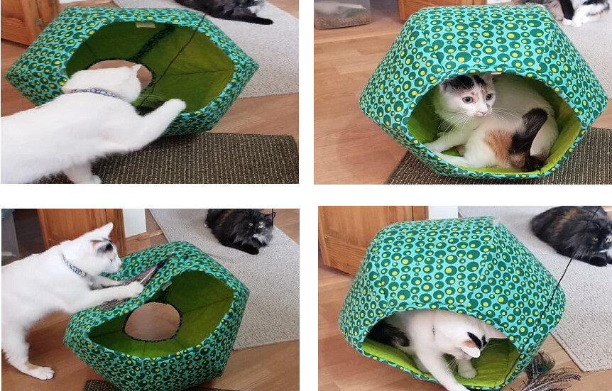 Buffy Playing In The Cat Ball