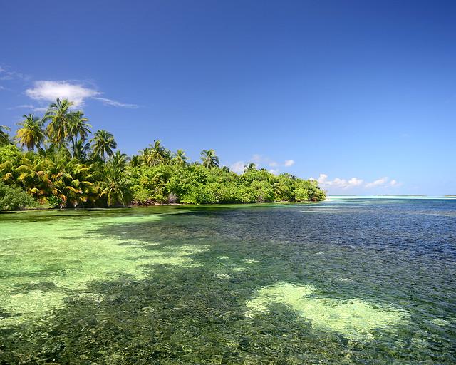 Corales rodeando una isla virgen en Maldivas