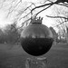 World in a Ball