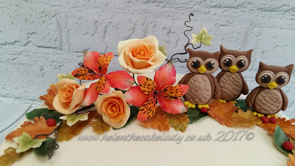 Autumn Themed Birthday Cake With Owls Helen Flickr