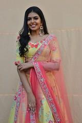 Shivani Latest Stills