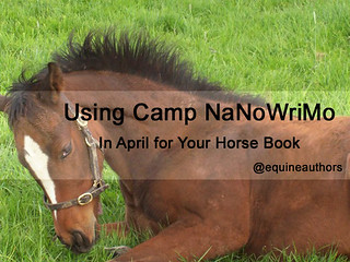 Using Camp NaNoWriMo in April for Your Horse Book @ Equine Authors