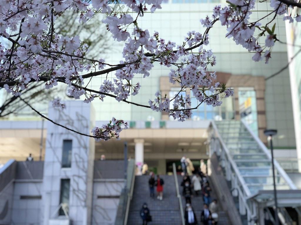 JR新宿駅、東南口