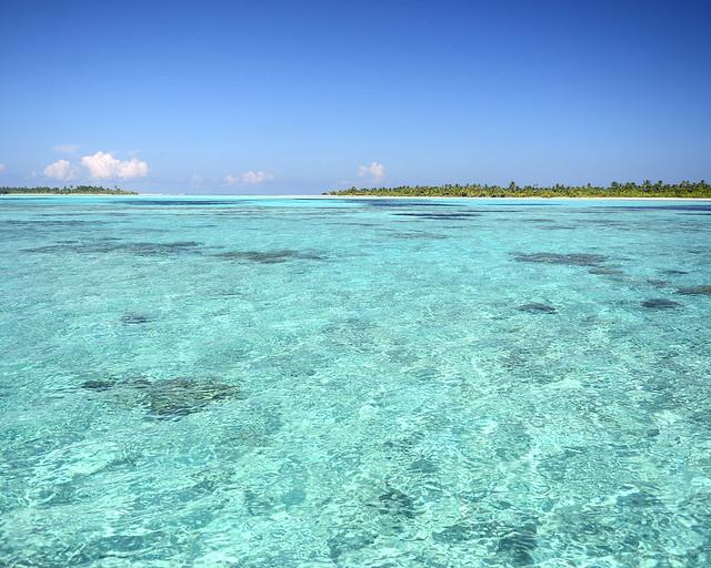 Aguas transparentes llenas de peces tropicales en las islas vírgenes de Maldivas