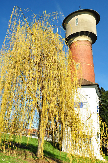 Ladenburg am Neckar ... März 2018 ... Foto: Brigitte Stolle ... Wasserturm