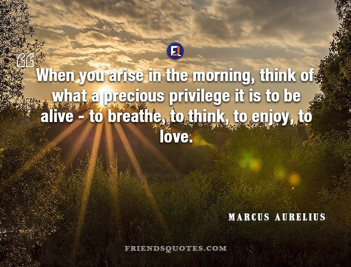 Marcus Aurelius Quote When Arise Morning When You Arise In Flickr