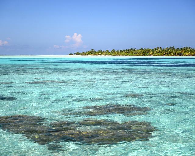 Aguas cristlinas con una isla al fondo llena de palmeras