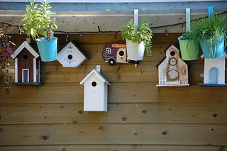 birdhouse weekly favorites 002 | by wvclaylady