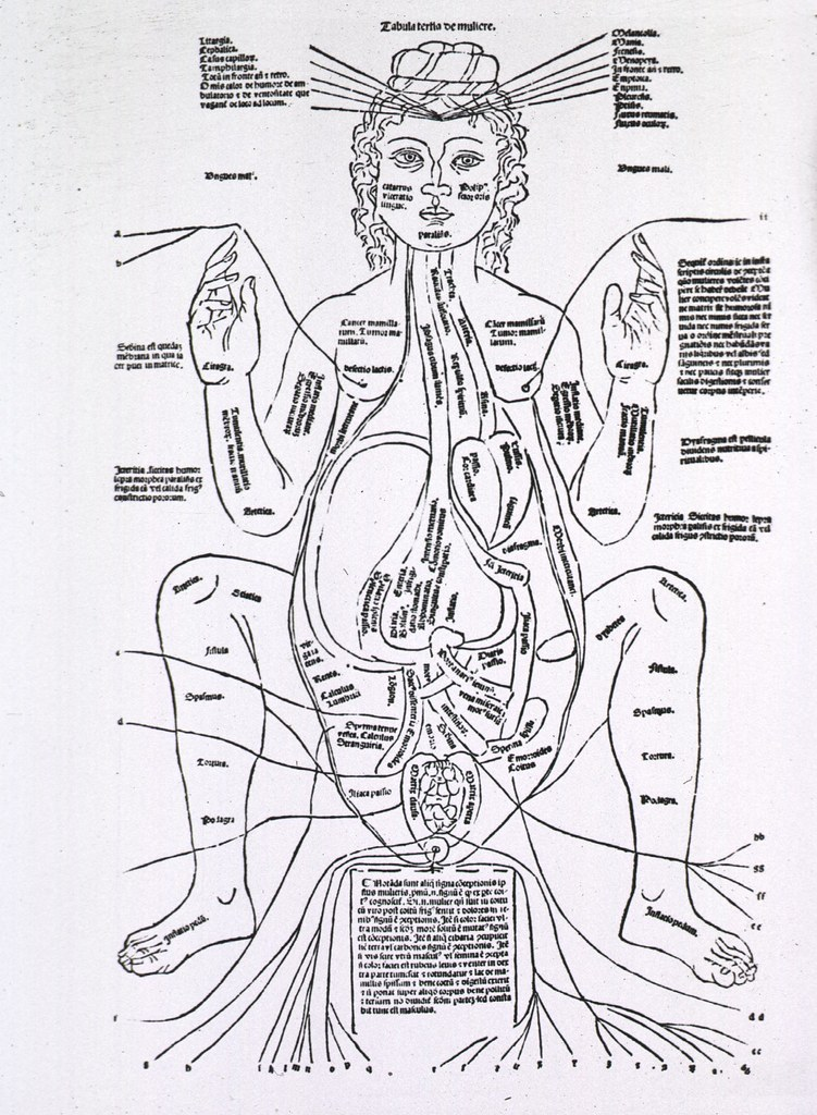 Anatomy - History | Publication: Venice: , 1495 Format: Stil… | Flickr
