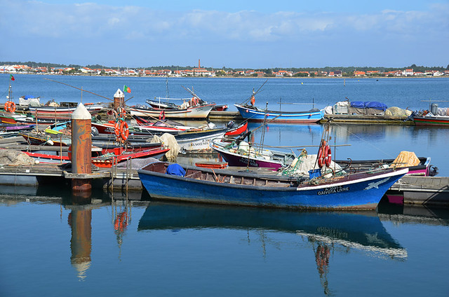 Fishing boats, Aveiro Lagoon, Portugal